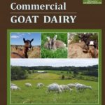 Guide To Starting A Goat Dairy
