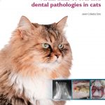 Visual Atlas of Oral and Dental Pathologies in Cats