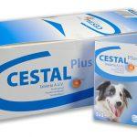 Cestal Plus Dog Flavour